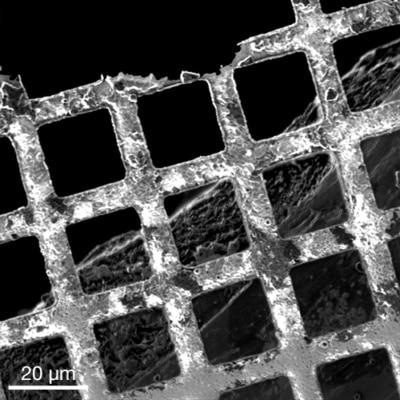 Xe Plasma FIB secondary electron image of a copper grid