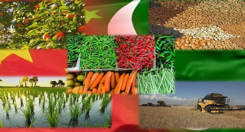 Pakistan to realize its agricultural potential through CPEC