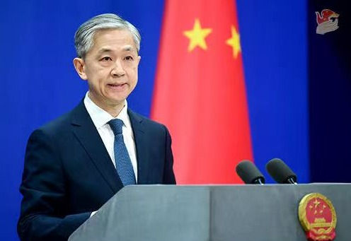 Pak-China COVID-19 cooperation illustrates our iron brother relationship: Wang Wenbin