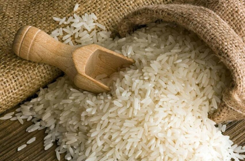 Pak-China cooperation sought to renew Pakistan's rice industry