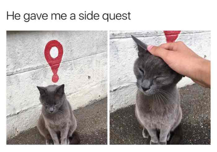 downtime sidequest D&D 5e Downtime