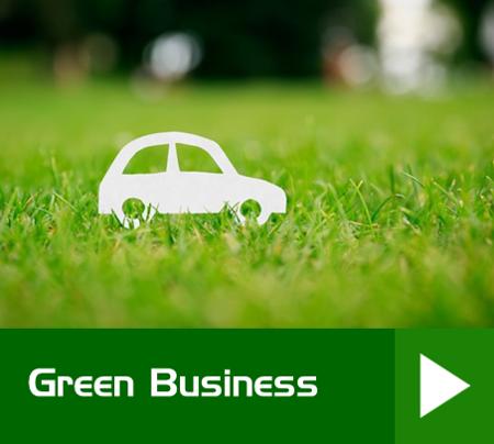 Green Business Nixon