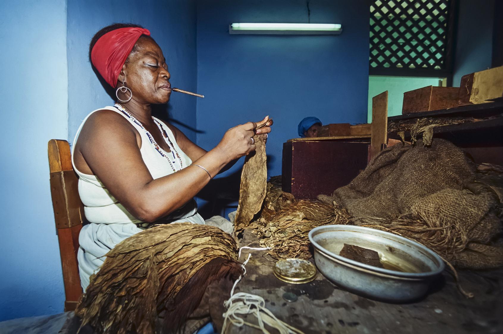 CUBA, Pinar Del Rio, woman working in a cigars factory