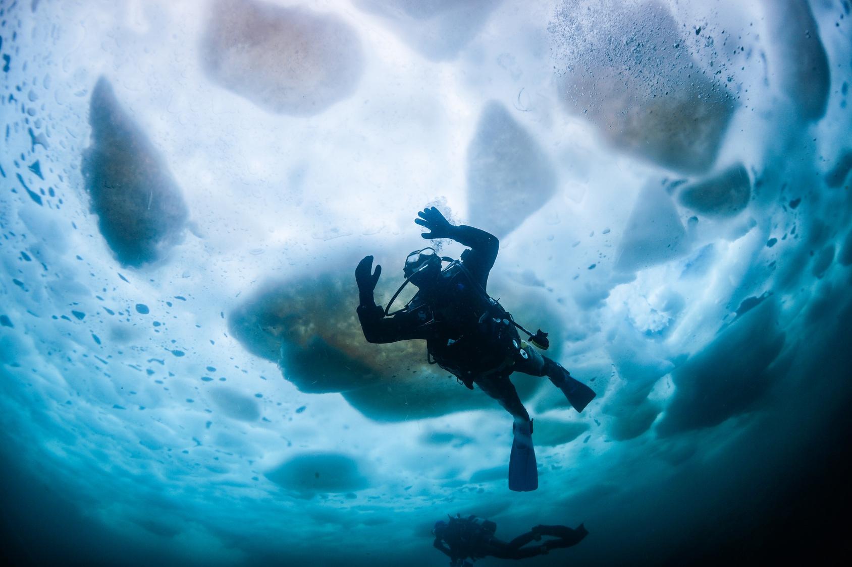 Diving under ice in Antarctica