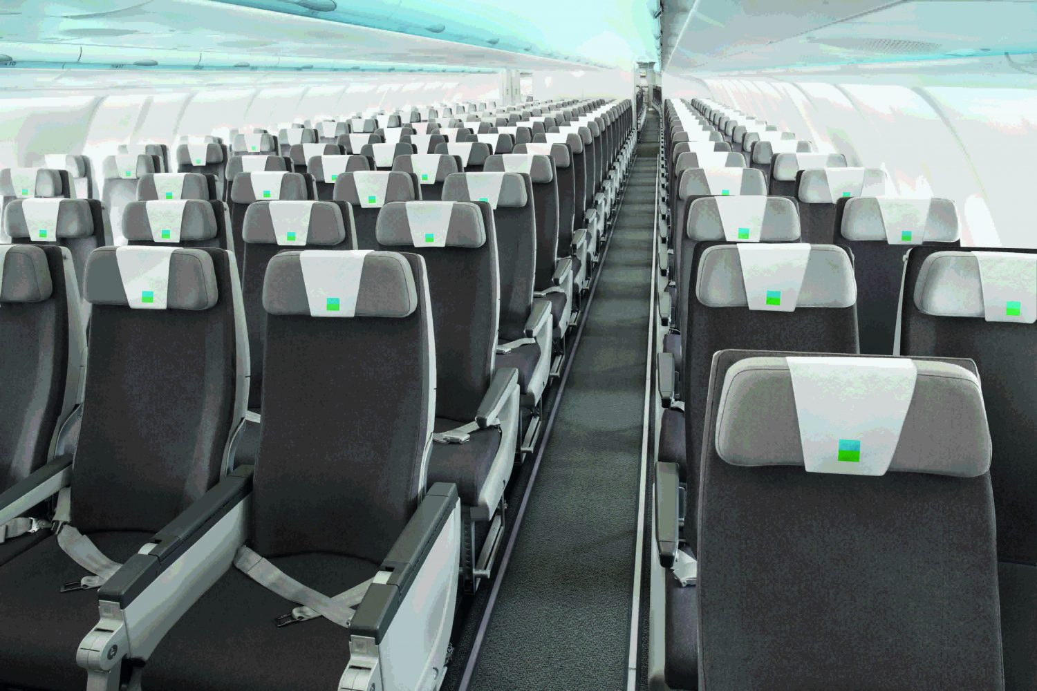 A330 Level low-cost long-haul airline
