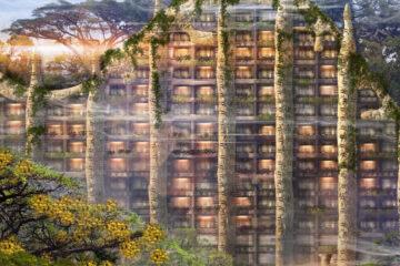 The Colony Hilton, WorldWild