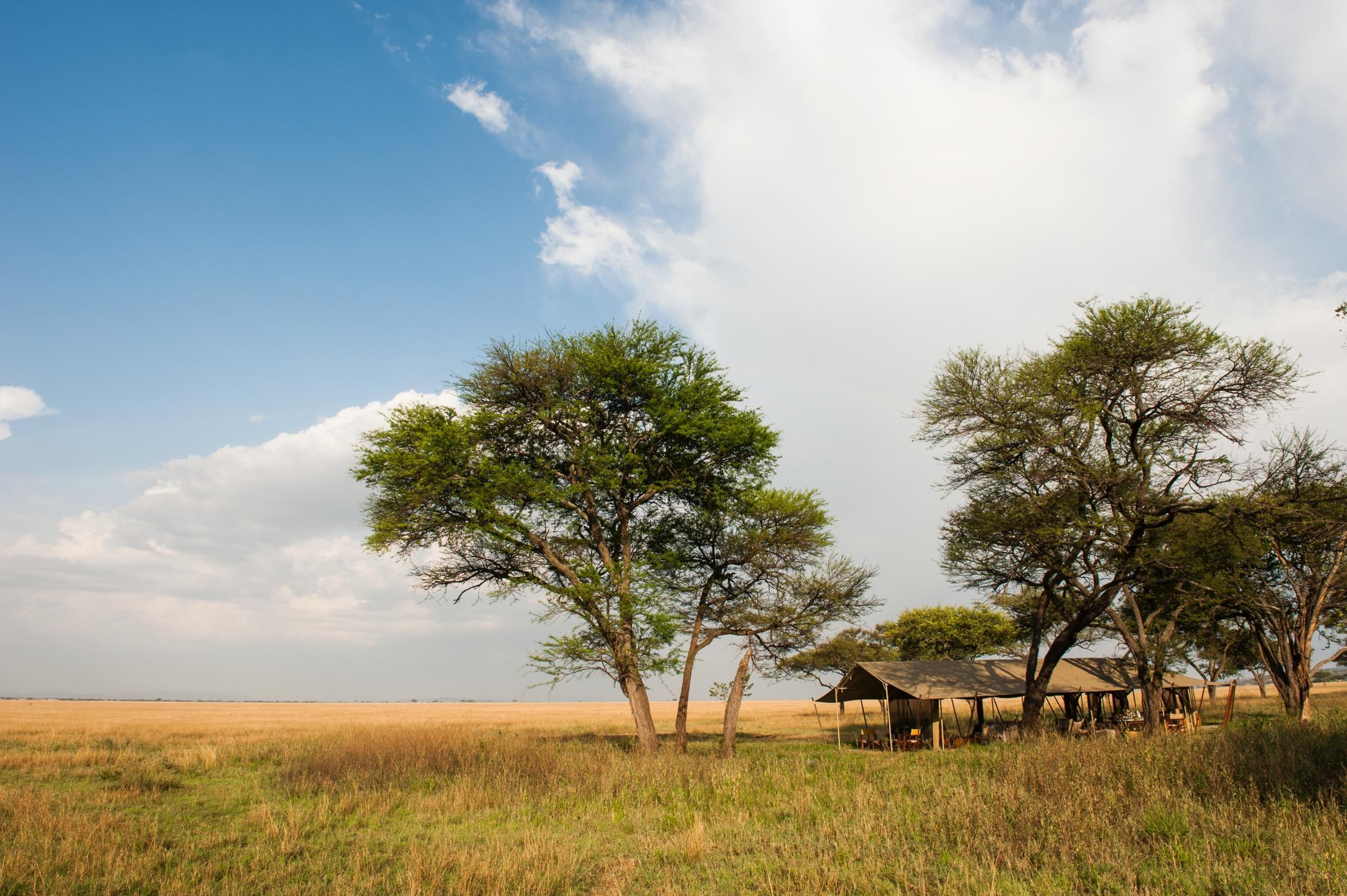 Aardvark Safaris, Serengeti Safari Camp