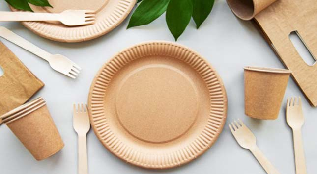 Disposable Plates & Cups