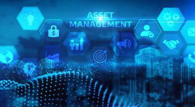 Crypto Asset Management