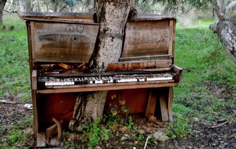 Prikaz snage prirode drvetom koje raste kroz klavir