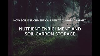 A balancing act: nutrient enrichment and soil carbon storage.