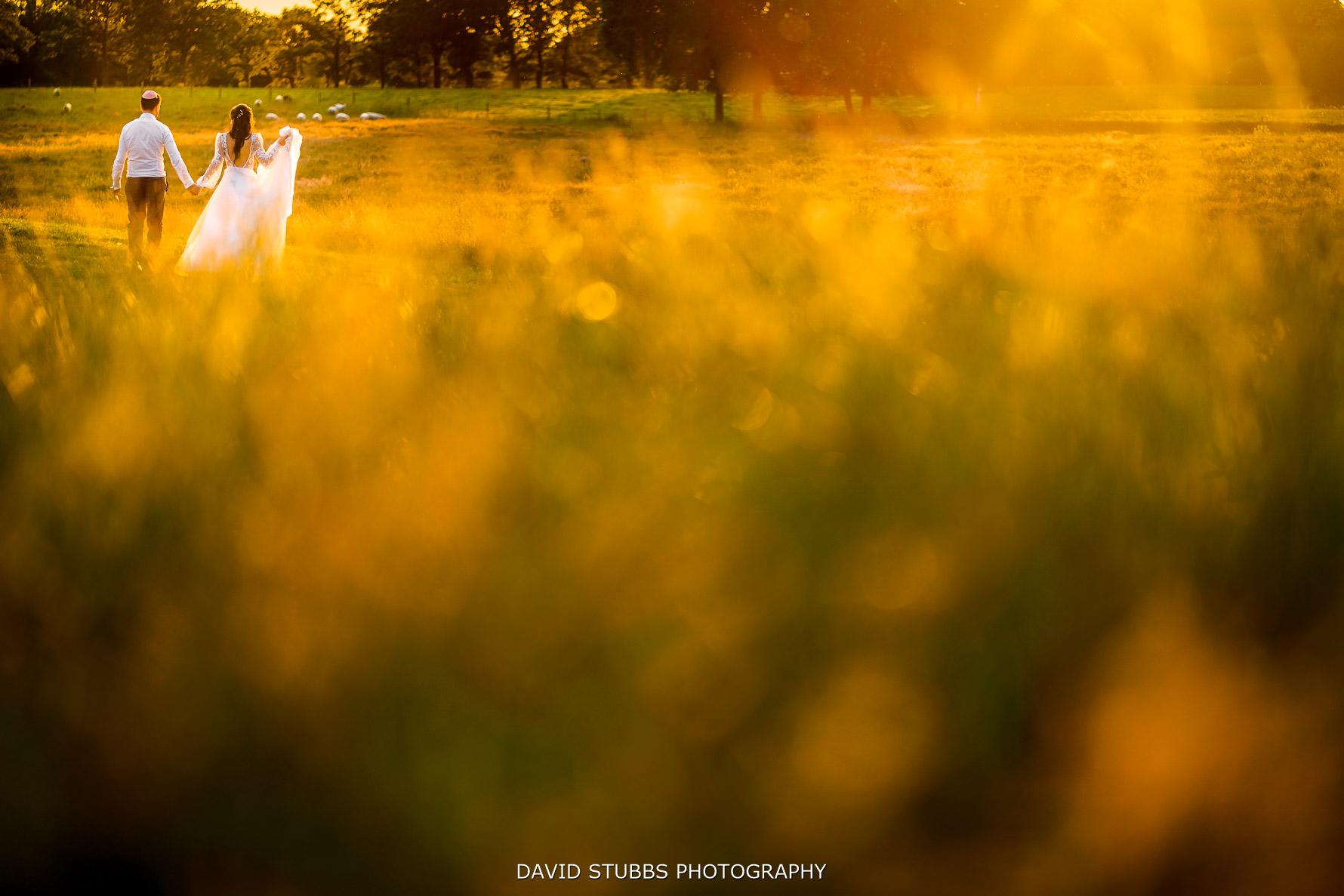 merrydale manor sunset