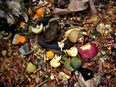 The future of composting