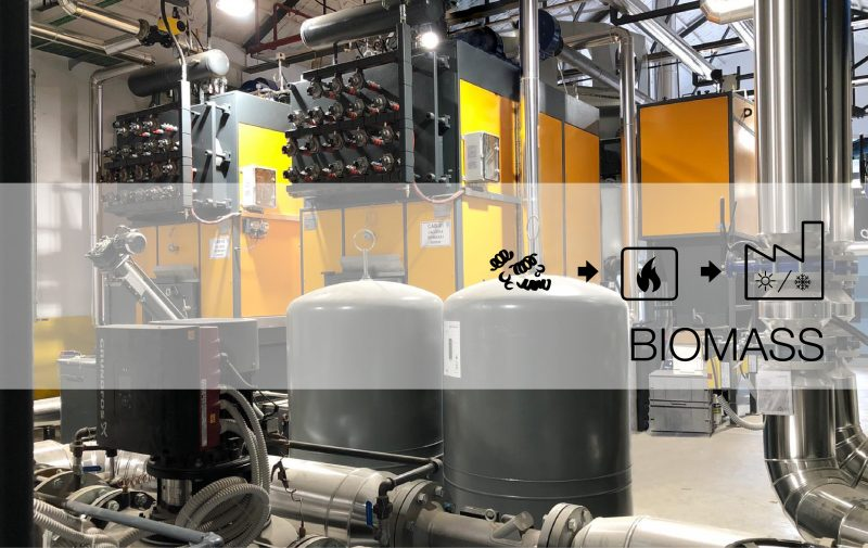 Quadpack Wood inaugurates biomass plant