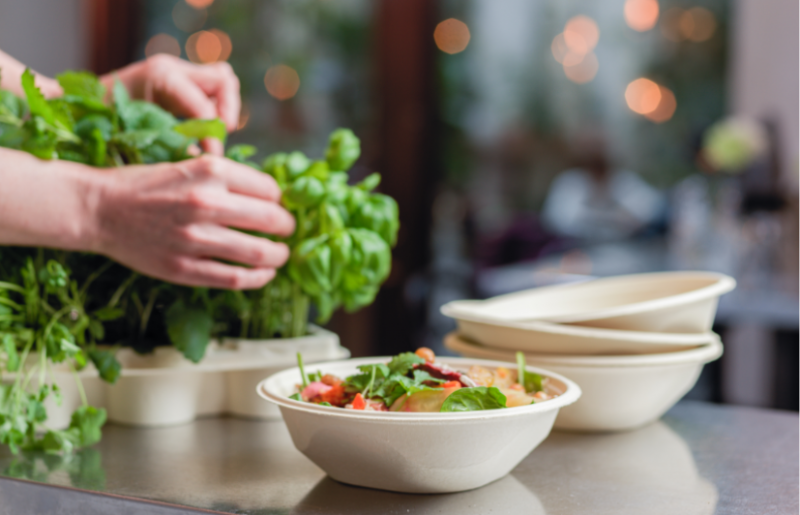 Stora Enso and Tingstad launch unique formed fiber food service bowls to replace plastics