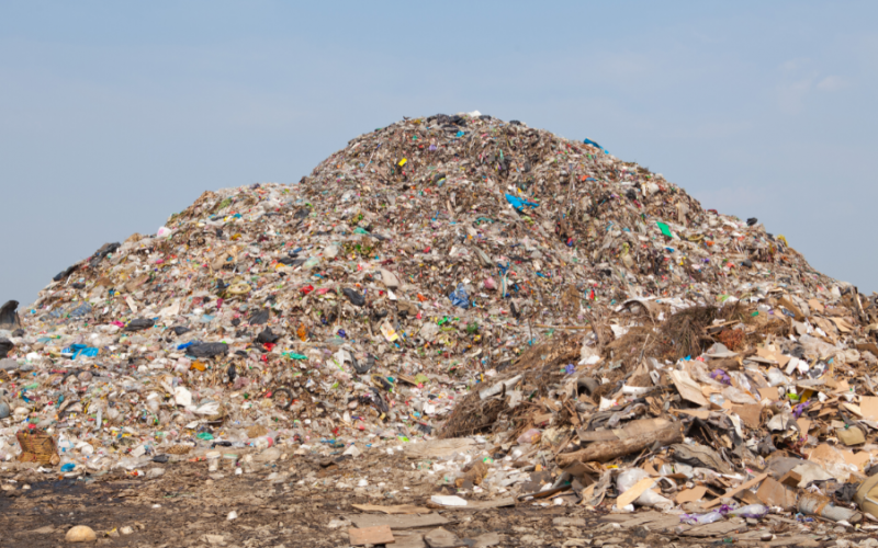 Whitehall advised to back compostable materials to increase food waste recycling