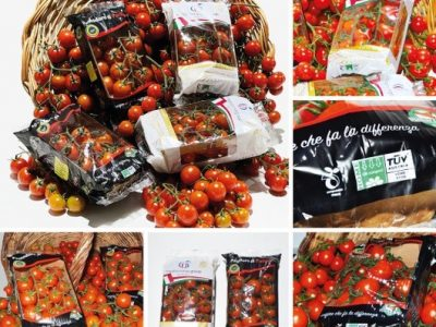 Gi.St.El. Plast adopts NatureFlex™ films for tomato wrapping