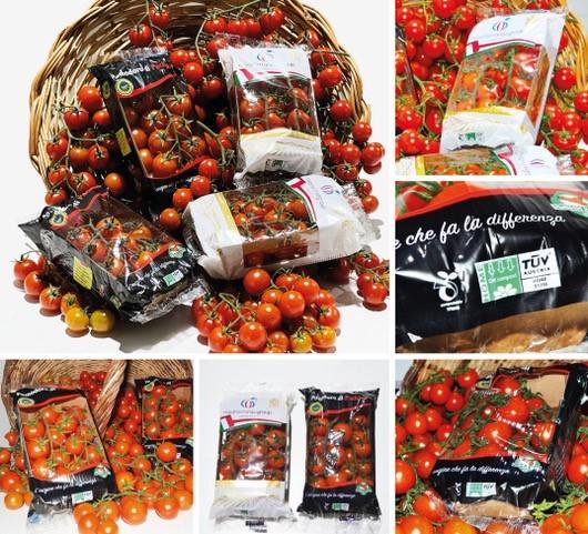 Gi.St.El. Plast adopts NatureFlex™ films for tomato wrapping