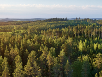 Metsä Board named on the Financial Times Climate Leaders 2021 list