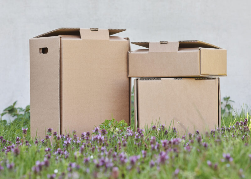 Packengeers have one goal: To develop and spread sustainable industrial packaging.