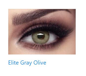 bella gray olive e
