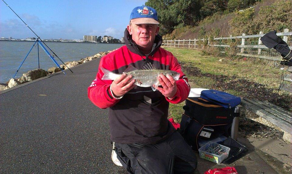 Paul little Bass