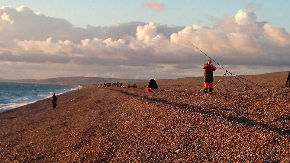 busy chesil