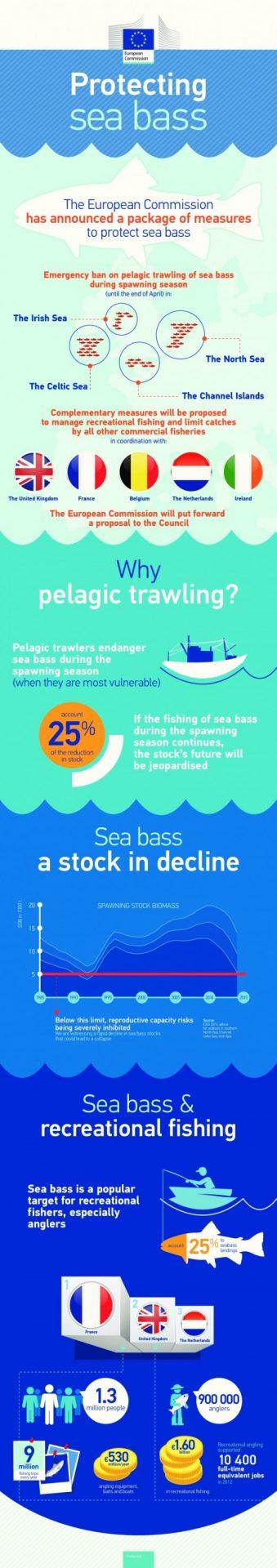 2015-seabass-facts_en