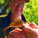 Split-Shotting for ultra light lure fishing