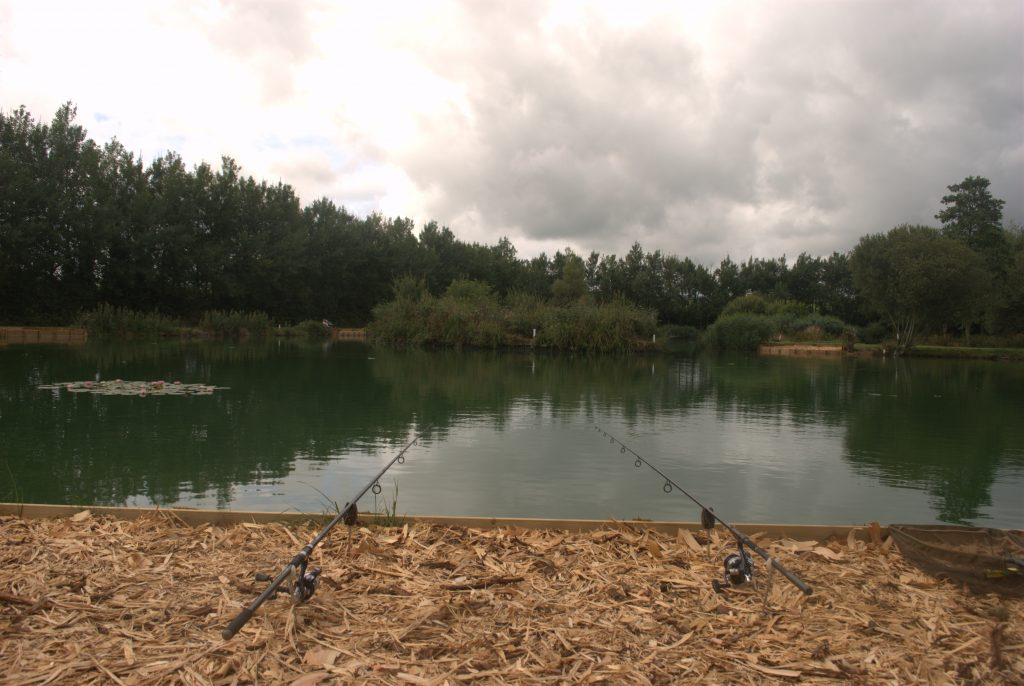 The Cat & Carp Lake at MIlemead Coarse Fishery