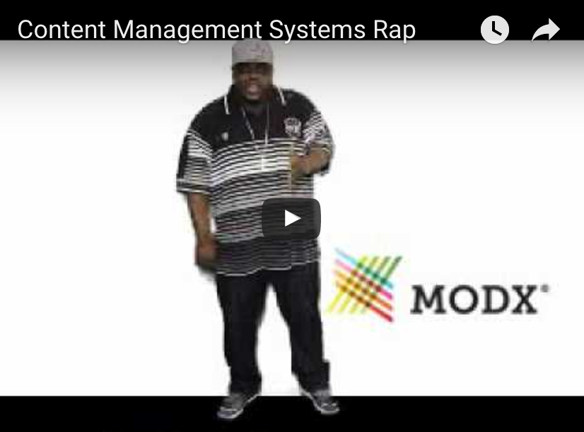 Content Management Systems The SEO Rapper