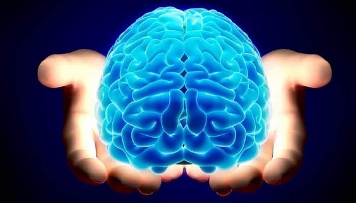 استجابة الدماغ للتمرينات الرياضية
