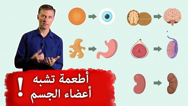 Foods That Mimic Body Parts