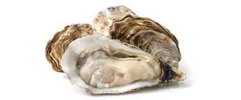 محار البحر يحوي النسبة الأكبر من الزنك من بين جميع الأطعمة