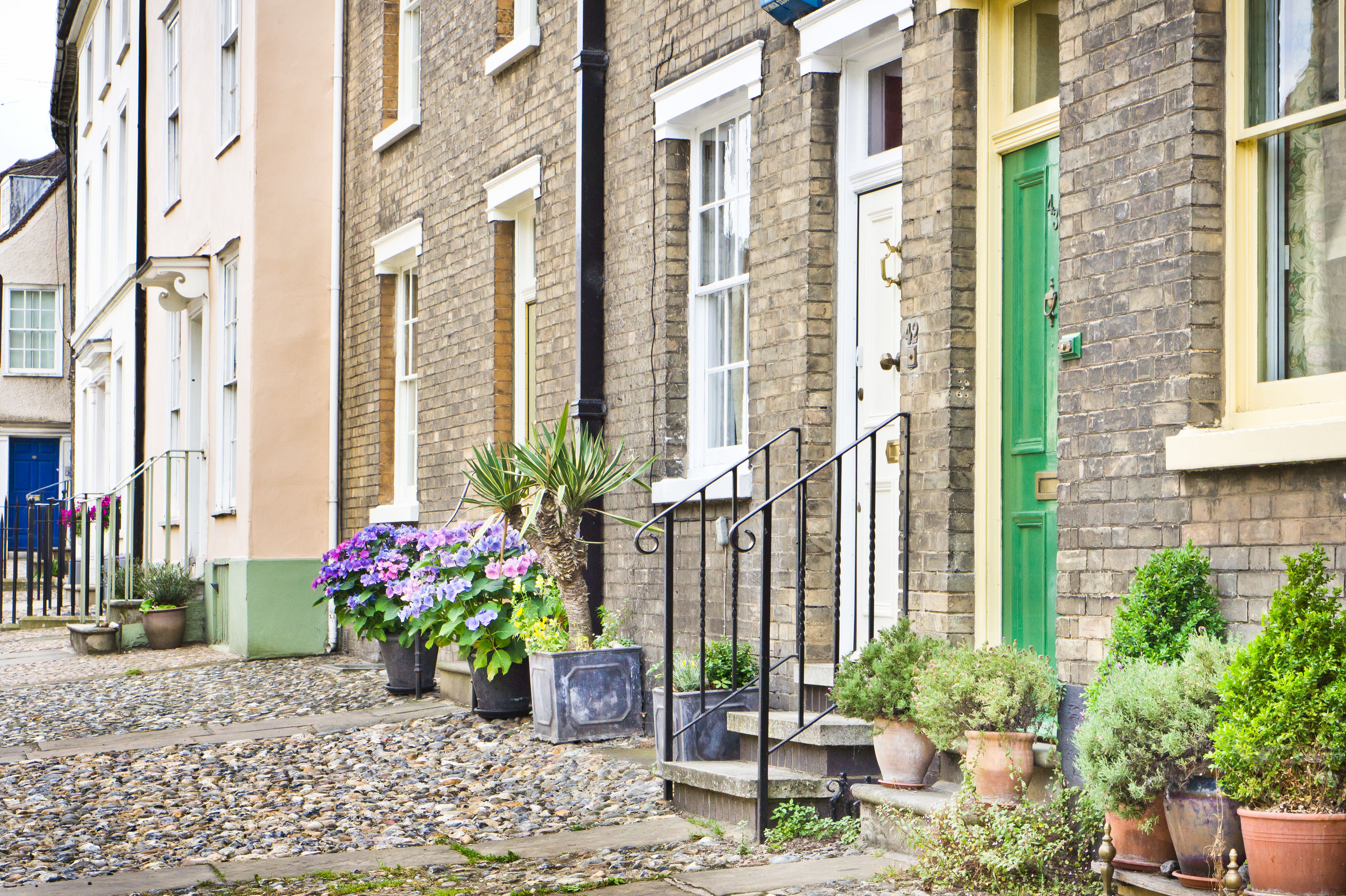 Town houses with plants in Bury St Edmunds, UK