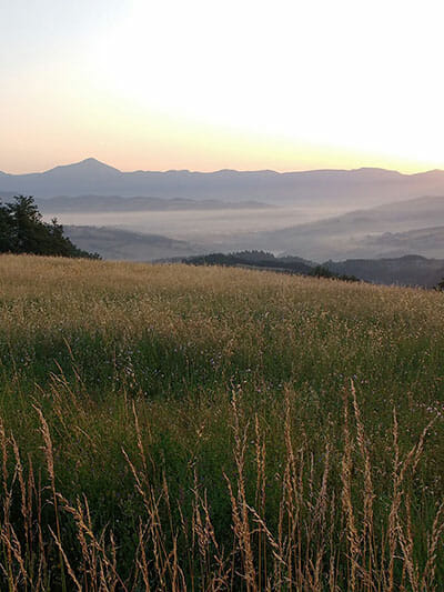 VIEW-FROM-FARM-FIELDS-IO