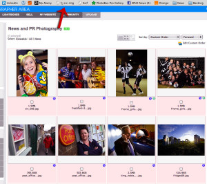 Demonstrating Google Image Search
