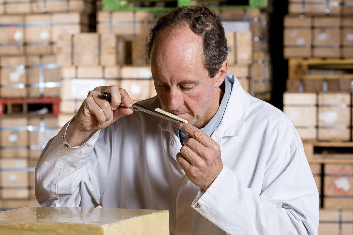 Brue Valley's Simon Clapp smells a core sample of cheese and grades it as it matures in this cooled store room.
