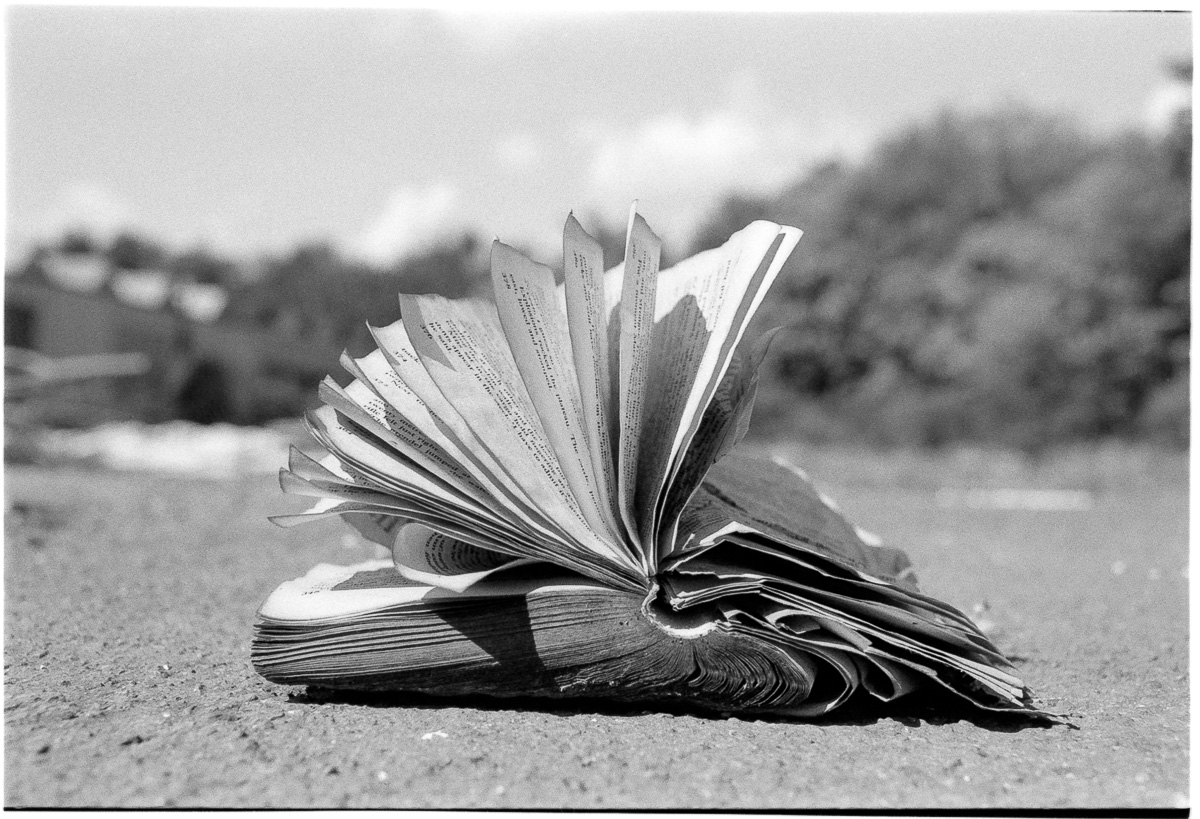 Ground-level view of a discarded book fans its pages in the wind as it lies on the ground.