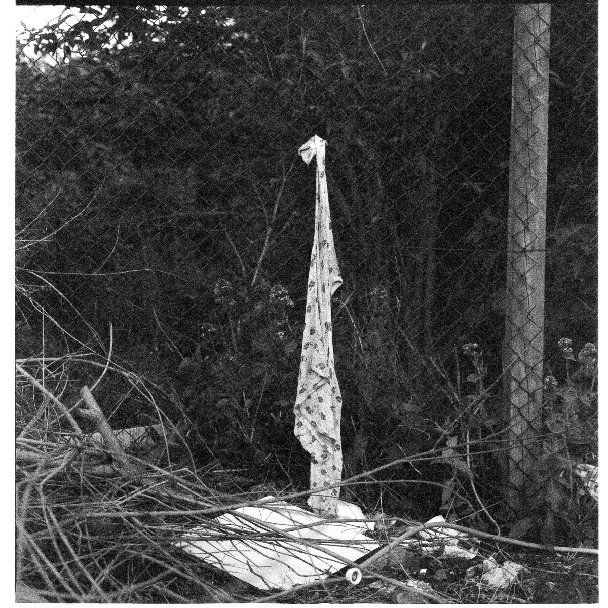 A towel is hung from a chickenwire fence.