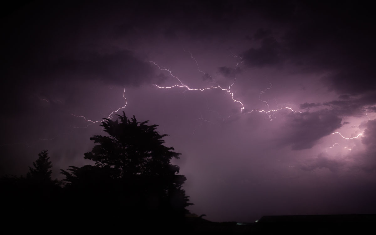 Lightning in the sky at night illuminates a large tree to the left of the photo.