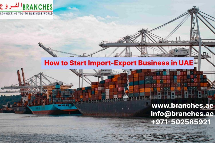 How to Start Import-Export Business in UAE