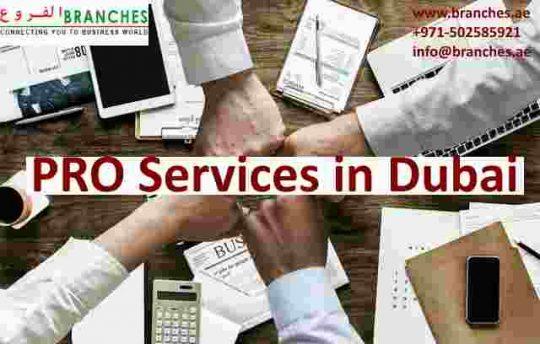 PRO Services in Dubai and UAE