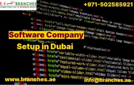 Software Company Setup in Dubai