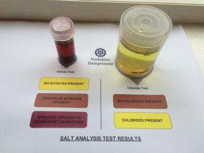 Salt Test