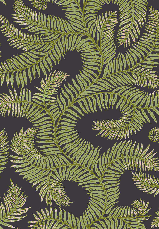 Designer Ferns Wallpaper   Dark Grey & Green