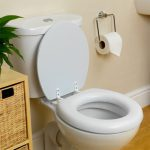 toilet-seat-replace-odd-jobs-london
