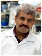 Mr. Vivek Tanavde