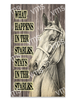 AN013 – What Happens In The Stables – 2 – 8×14