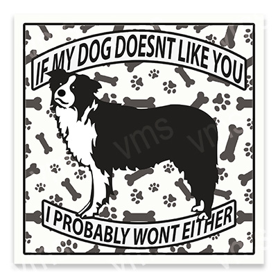 AN014 – Dog Doesn't Like you Collie – 12×12